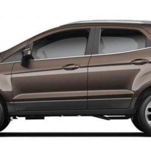 Ford Ecosport nâu